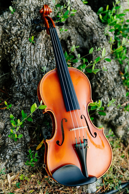 È tempo di Varignana Music Festival