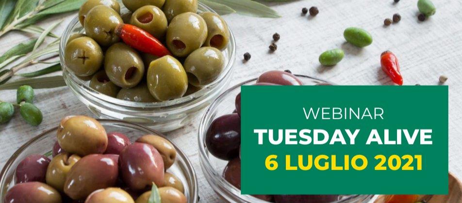 Per ottenere le migliori olive da mensa sono necessarie le più innovative tecniche colturali