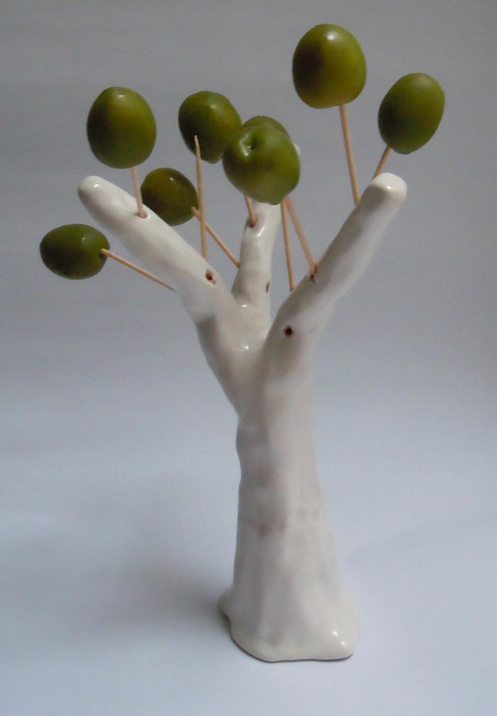 Sappiamo davvero tutto sulle tecniche colturali per ottenere le migliori olive da tavola?