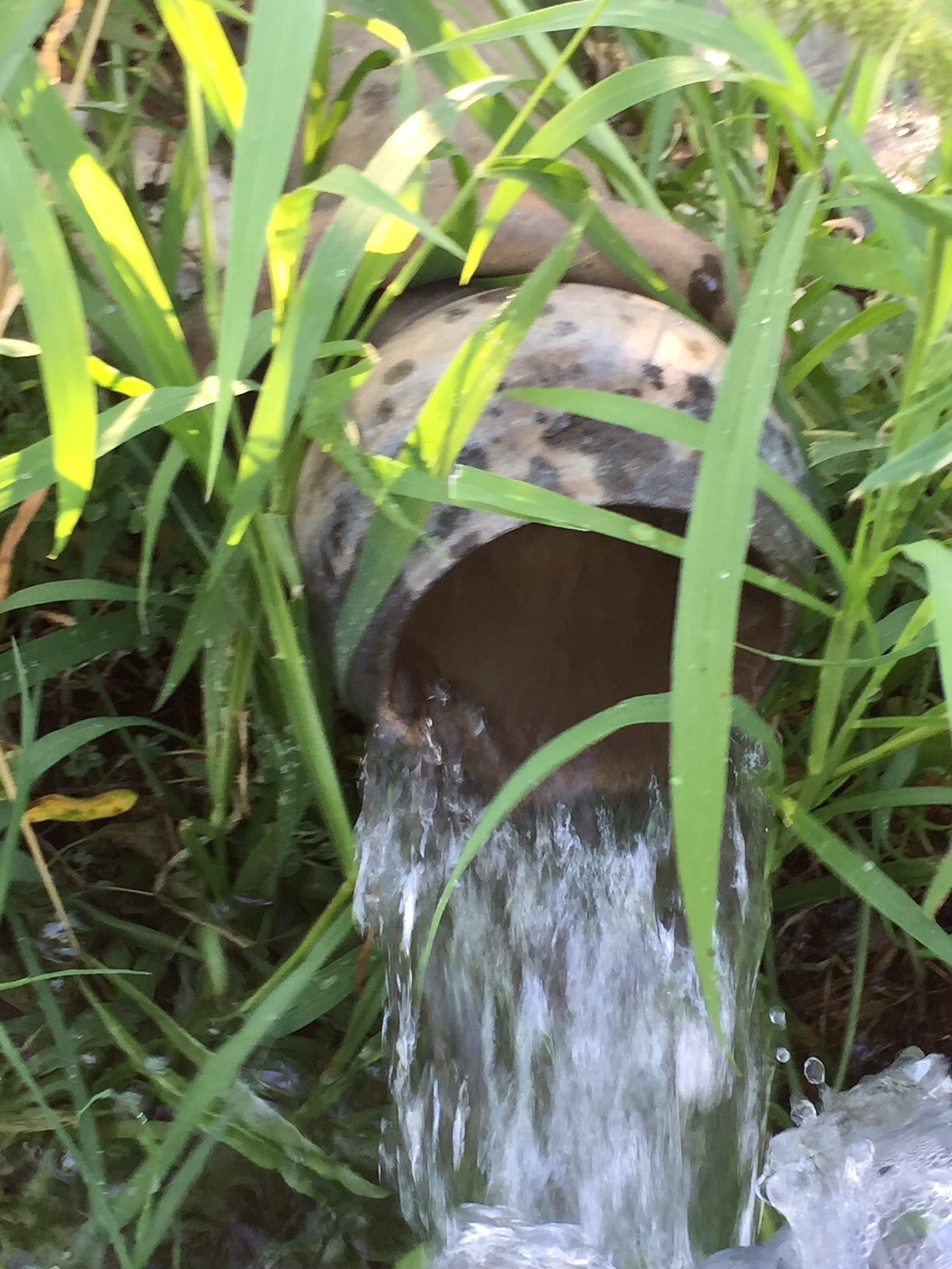 Garantire l'acqua alle colture nelle aree in cui questa preziosa risorsa manca o è carente