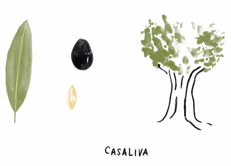 Quali sono le regole per indicare le varietà di olive in etichetta