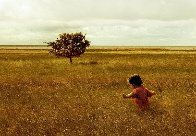 Terra in cambio di bambini