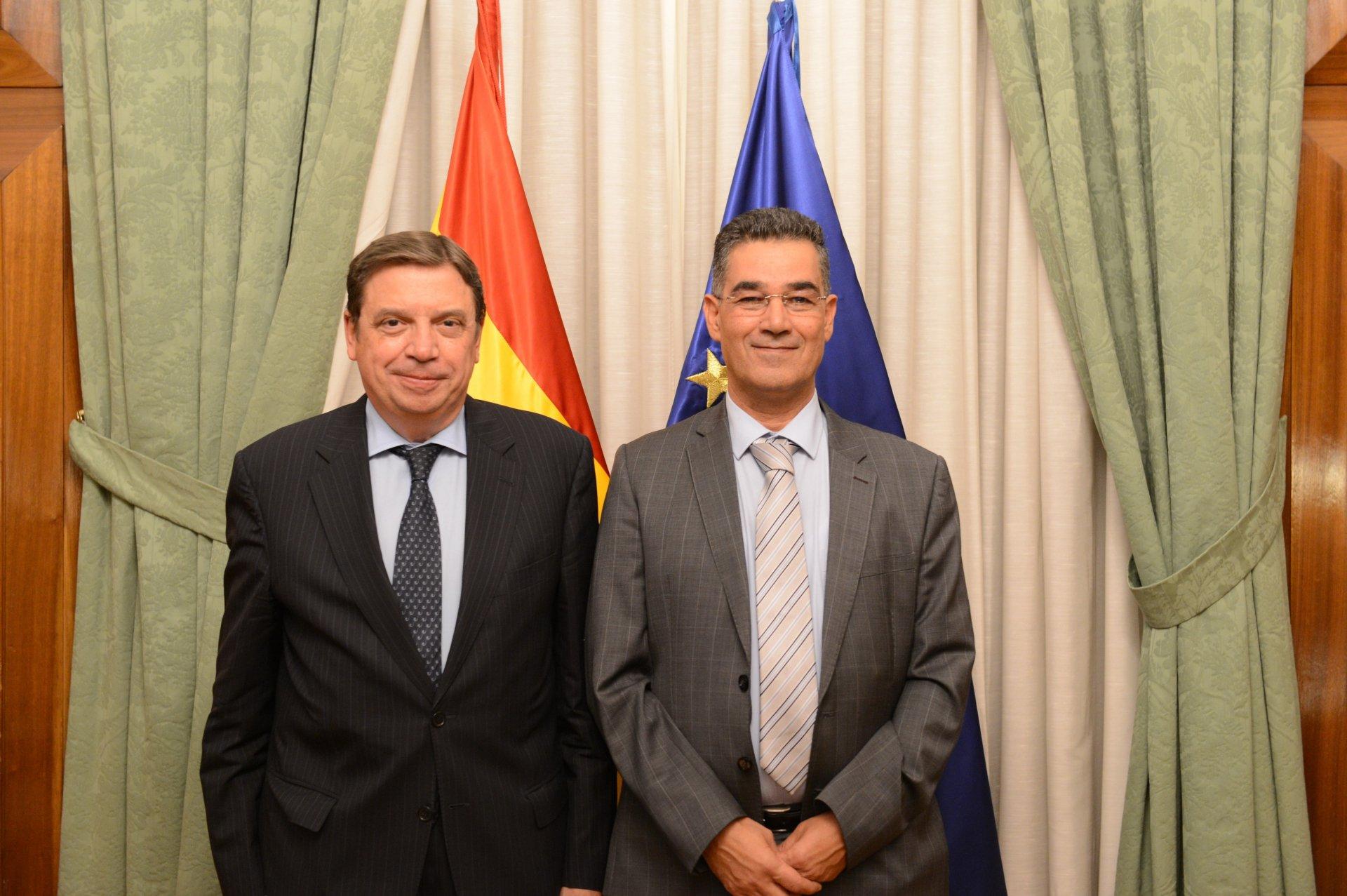 Consiglio oleicolo internazionale, pieno sostegno da parte della Spagna alle attività del Coi