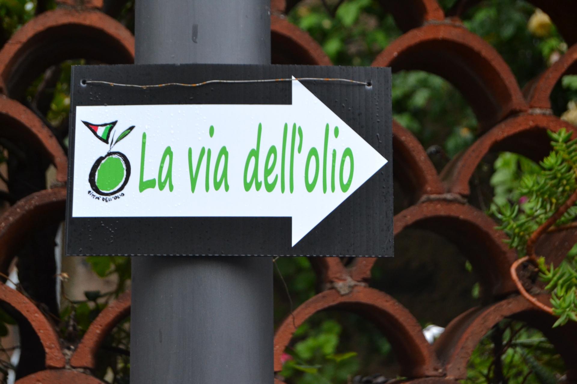 La Sardegna è anche olivicoltura, non solo mare e vacanza