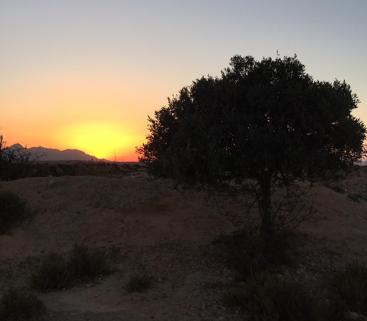 Biodiversità e aree protette