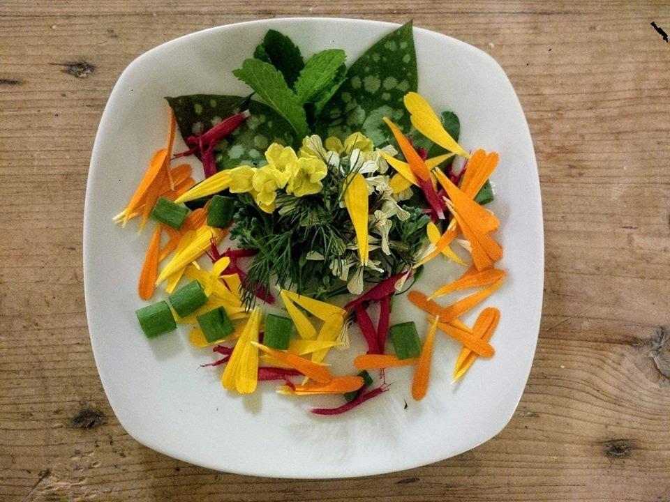Insalata rinfrescante con verdure e fiori dell'orto, erbe selvatiche e cipolla egiziana ligure