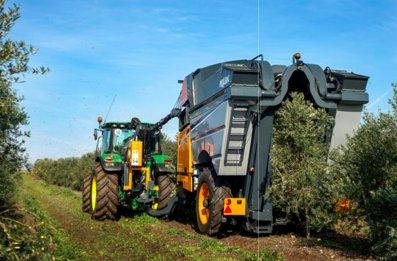 Borgo Incoronata, Foggia: XI Giornata dimostrativa di raccolta in continuo delle olive