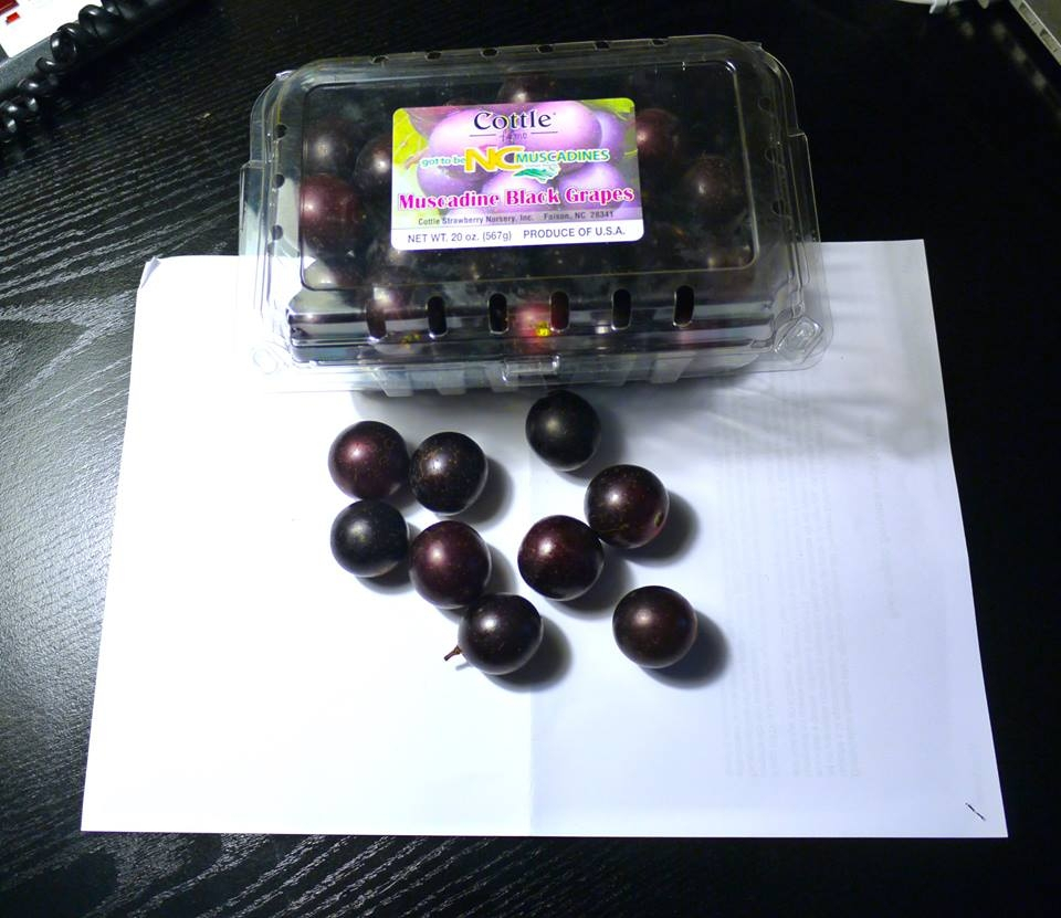 Mai assaggiata l'uva di Muscadine?