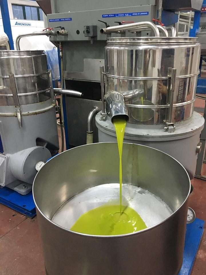 Dalle olive all'olio in sei mosse