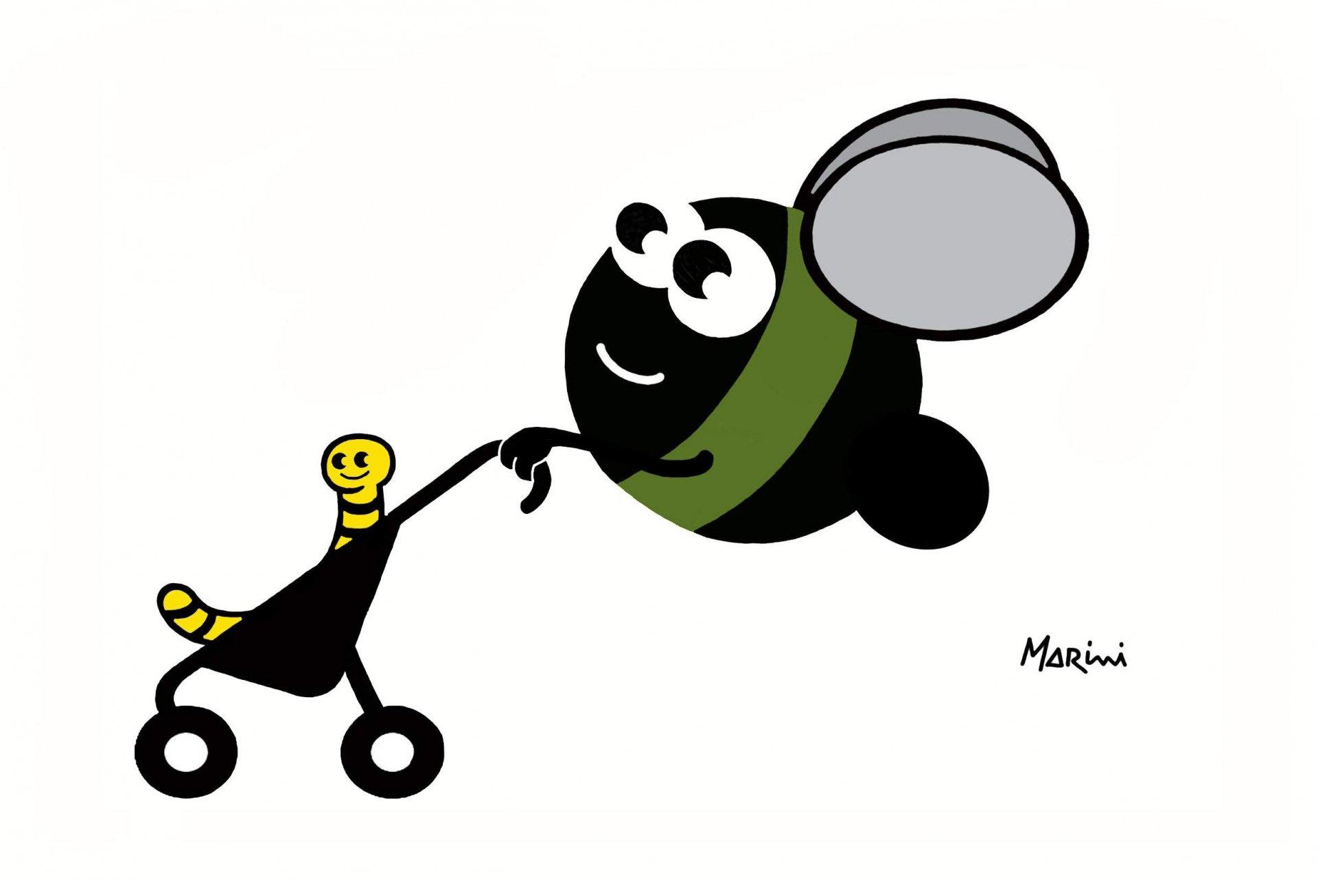 Mosca olearia, Assitol: favorire buone pratiche agricole per difendere l'olivagione 2016