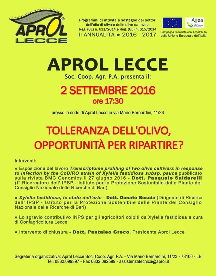 Xylella, un incontro a Lecce sulla tolleranza dell'olivo e le opportunità per ripartire