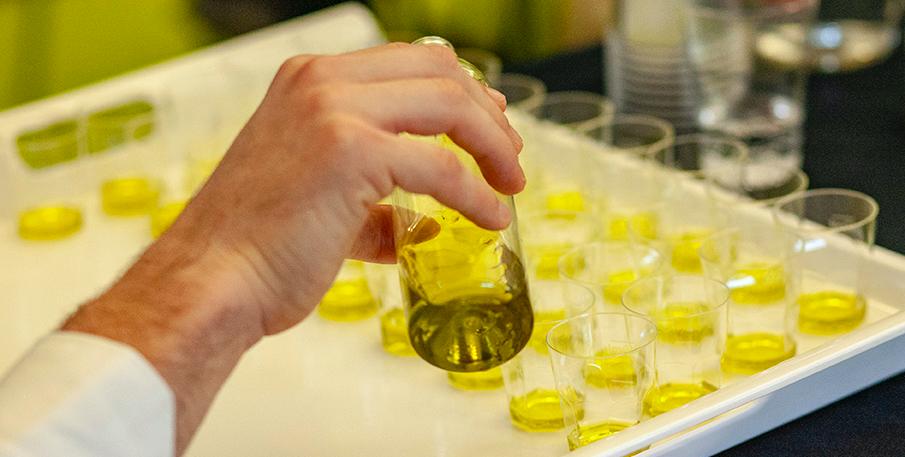 Come iscriversi e partecipare ai laboratori di assaggio di Olio Officina Festival
