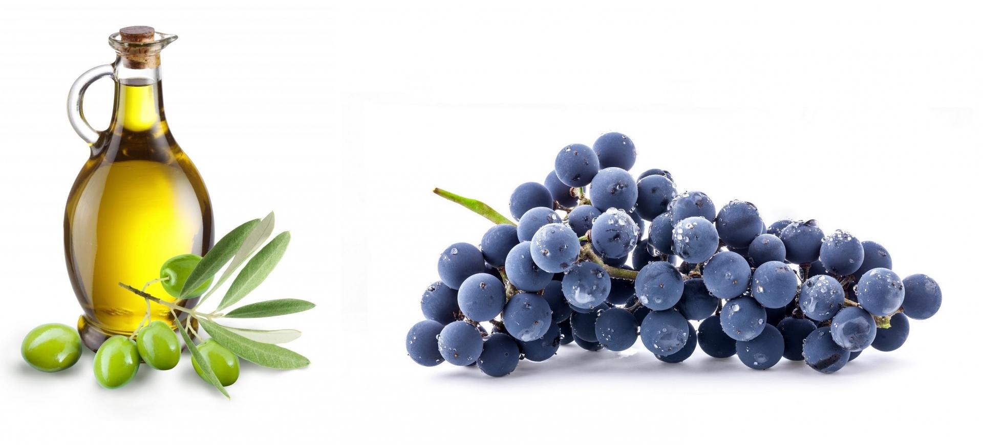 Mare&Mosto-Le vigne sospese, il mondo del vino e dell'olio ligure torna a Sestri Levante