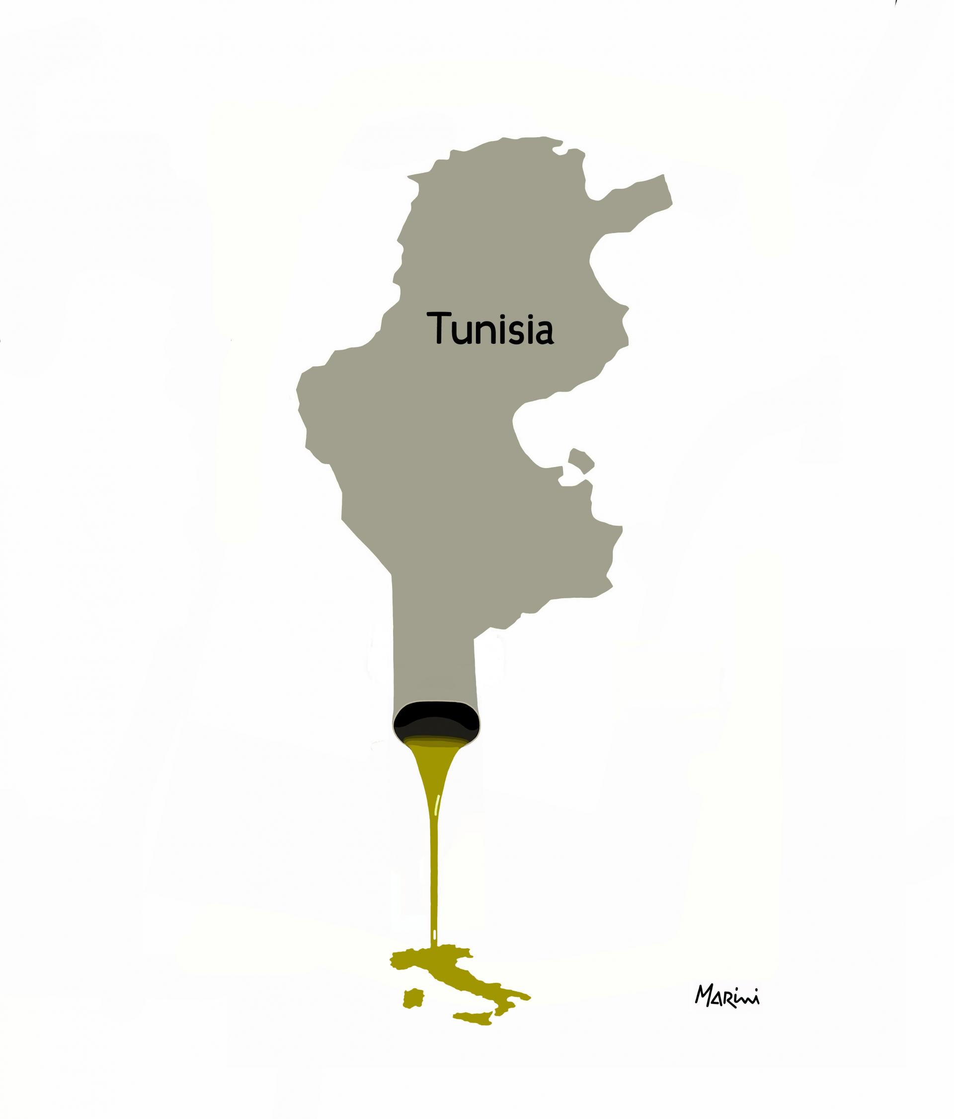 Olio tunisino, le proposte Assitol contro il rischio frodi