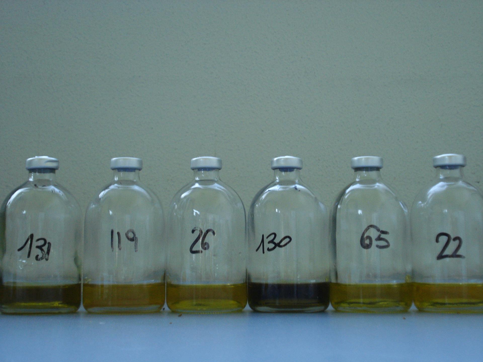 L'impronta molecolare dell'olio