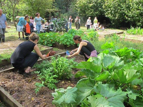 Hortus Urbis, l'orto come palcoscenico dove imparare, condividere saperi, divertirsi