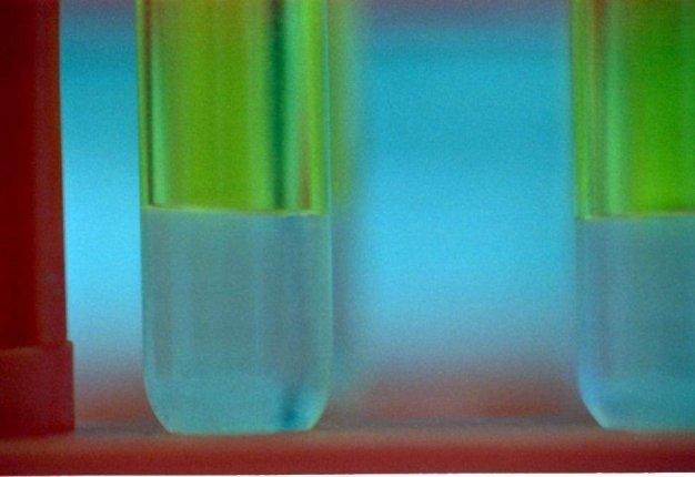 Il DNA dell'olio. Cose da sapere