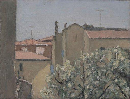 L'olivo di via Fondazza