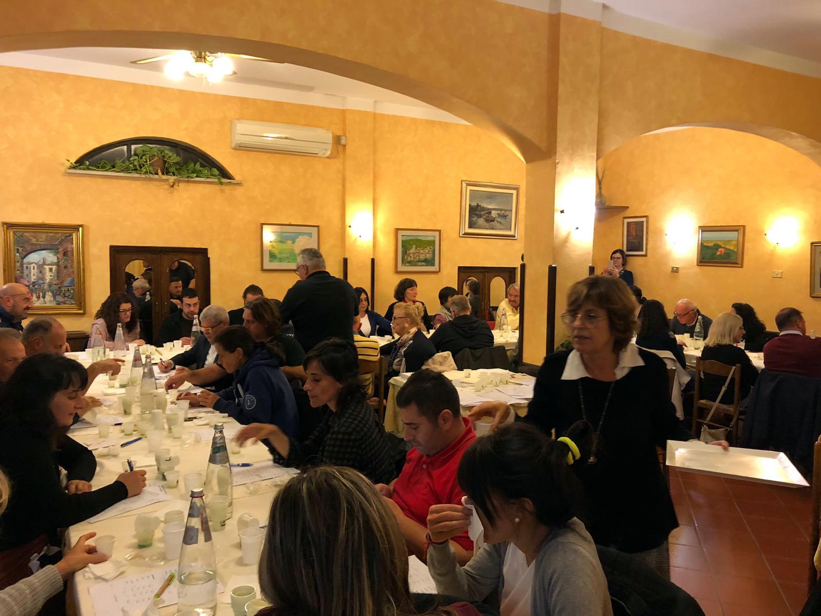 Olivagione 2019 in provincia di Latina, Capol annuncia una produzione di circa 130 mila quintali di olive