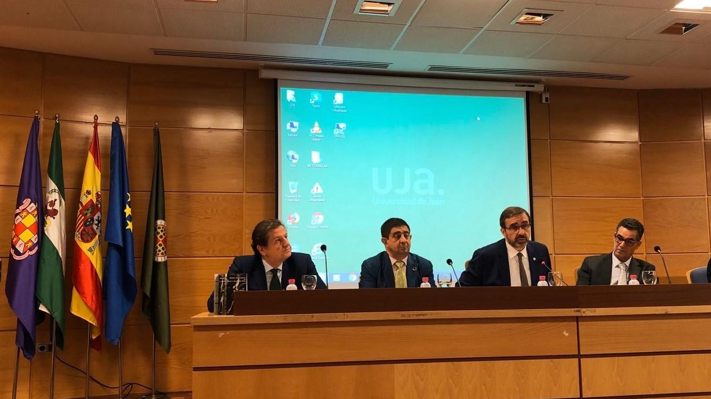 Spagna, un master sulla tecnologia dell'olivicoltura e dell'olio d'oliva