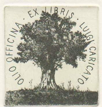 L'olivo entra nell'ex libris