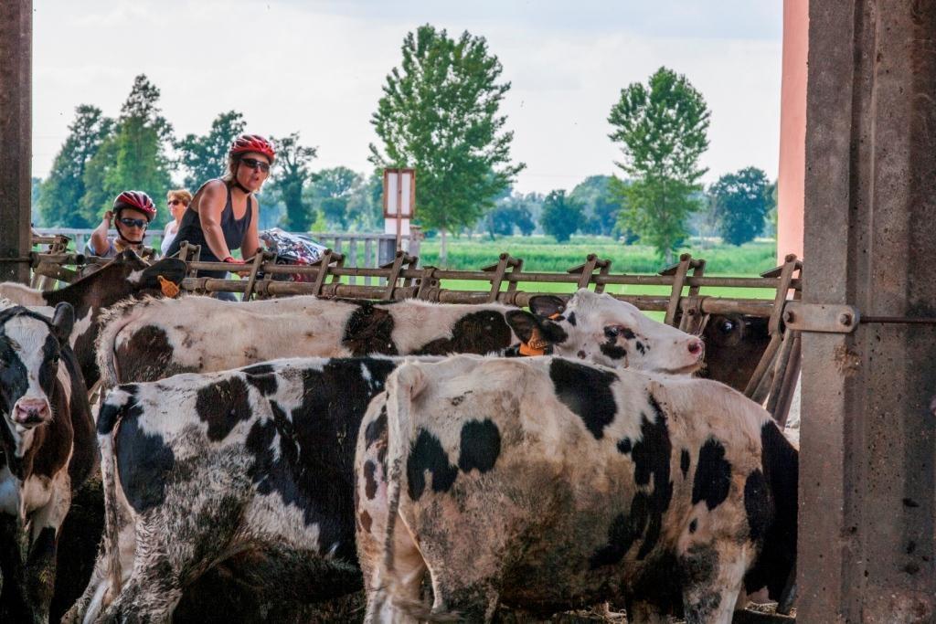 Più agriCultura