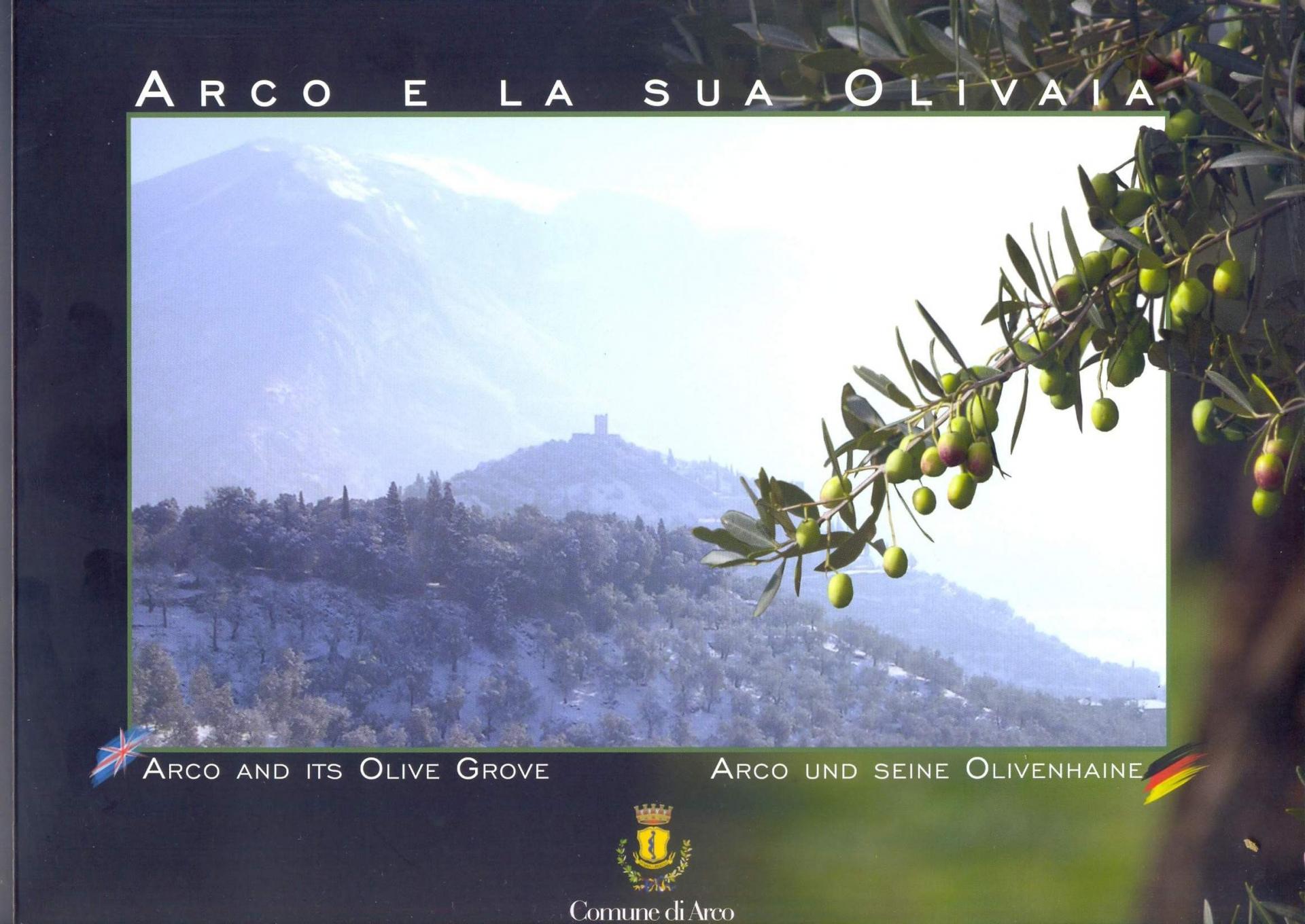 Arco e la sua olivaia