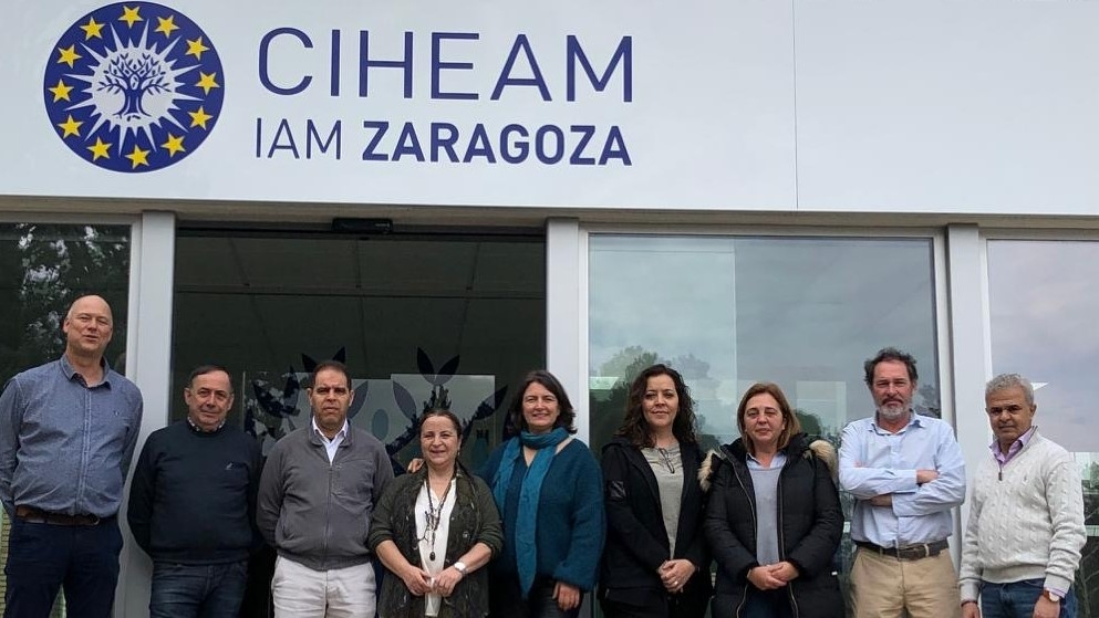 The IOC and CIHEAM-IAMZ met to establish the advanced course on the monitoring and surveillance of olive pathogens