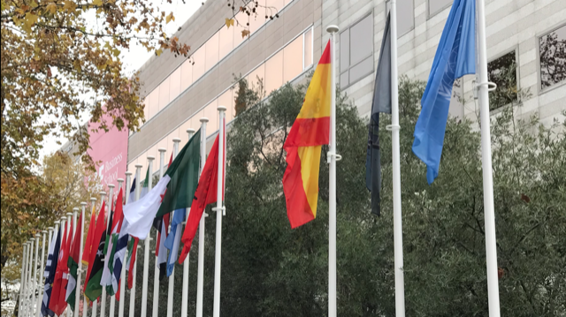 The mission of the International Olive Council