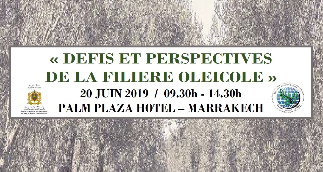 Seminar in Marrakech: challenges and prospects of the olive sector