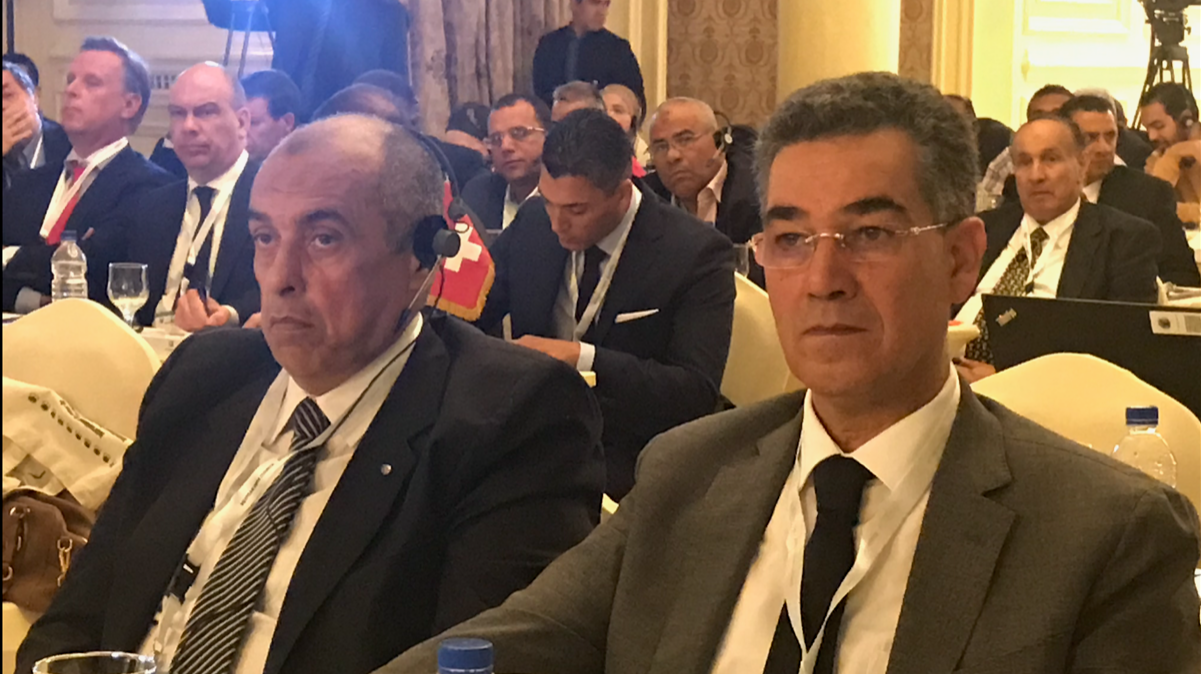 Iooc, investment opportunities in the Egyptian olive sector