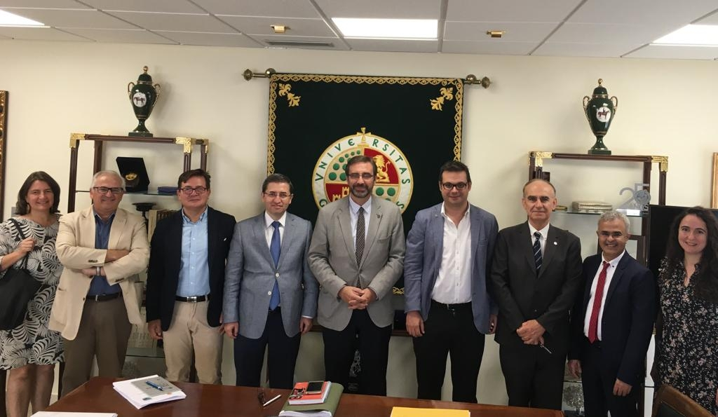 Fresh International Olive Council-backed grants for the University of Jaén