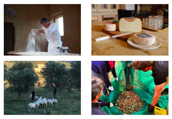 Terroir Tuscany: rural logic. Program Itinerary