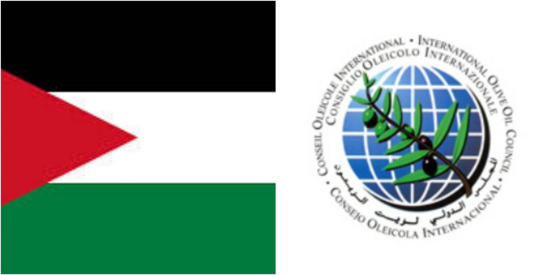 Jordan ratifies its accession to the International Olive Council