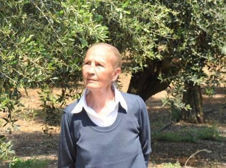 In vacanza nel Salento, abbracciati stretti agli olivi