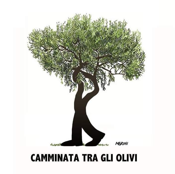 Chi ha mai detto che gli olivi siano immobili? Anche loro camminano con noi