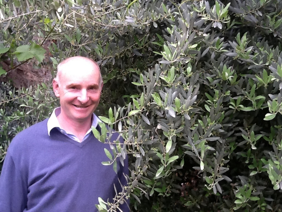 L'amore per l'olivo di Josephus Mayr in dieci scatti