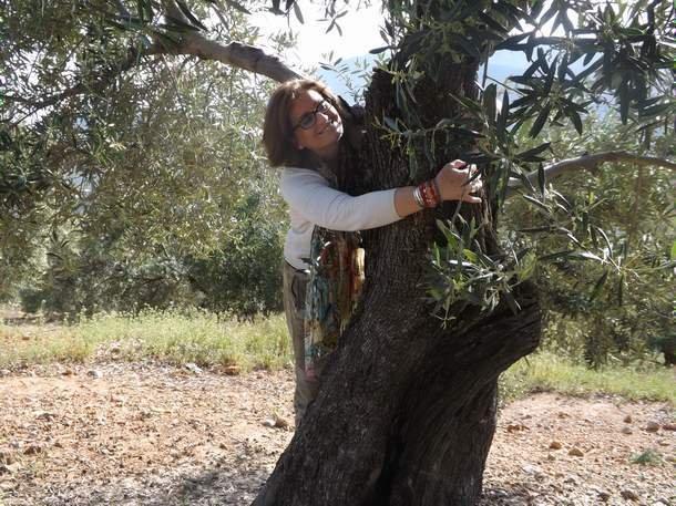 Per un olivicoltore la speranza non è sufficiente. Ci vuole l'entusiasmo