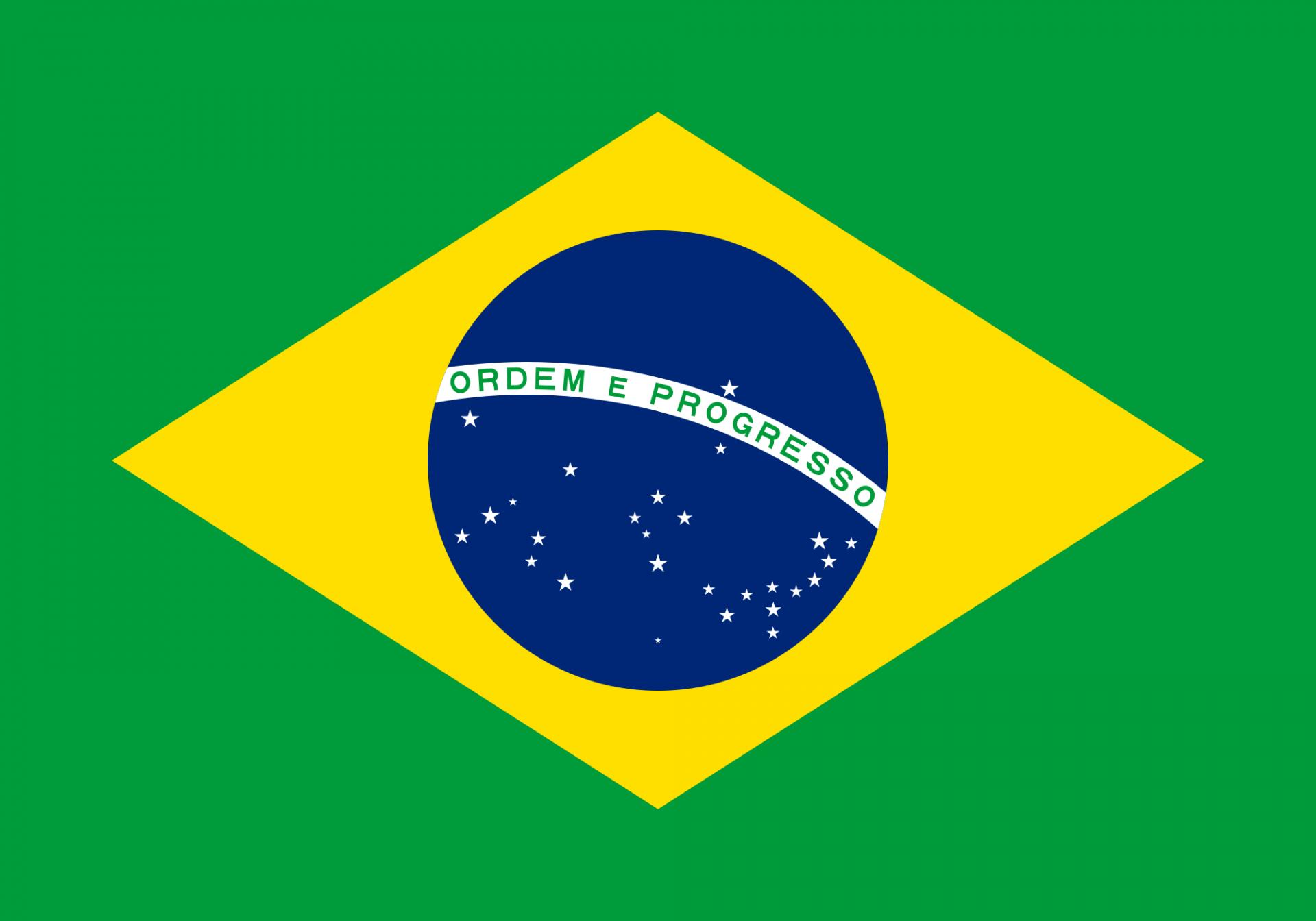 Olio e olive da tavola in Brasile