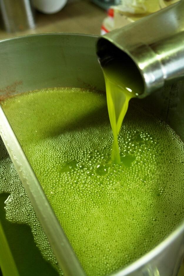 Individuati i migliori oli prodotti da olivicoltori dilettanti