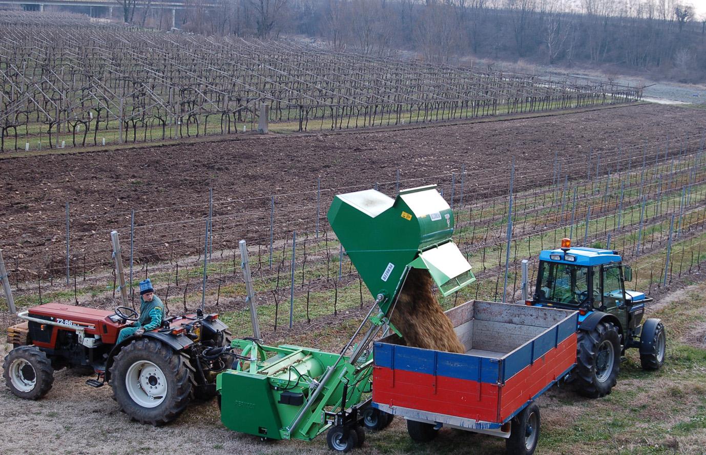 Produrre biomasse in modo razionale