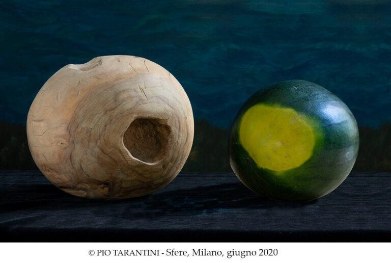 Dialogo tra un cocomero e un vecchio pezzo d'ulivo