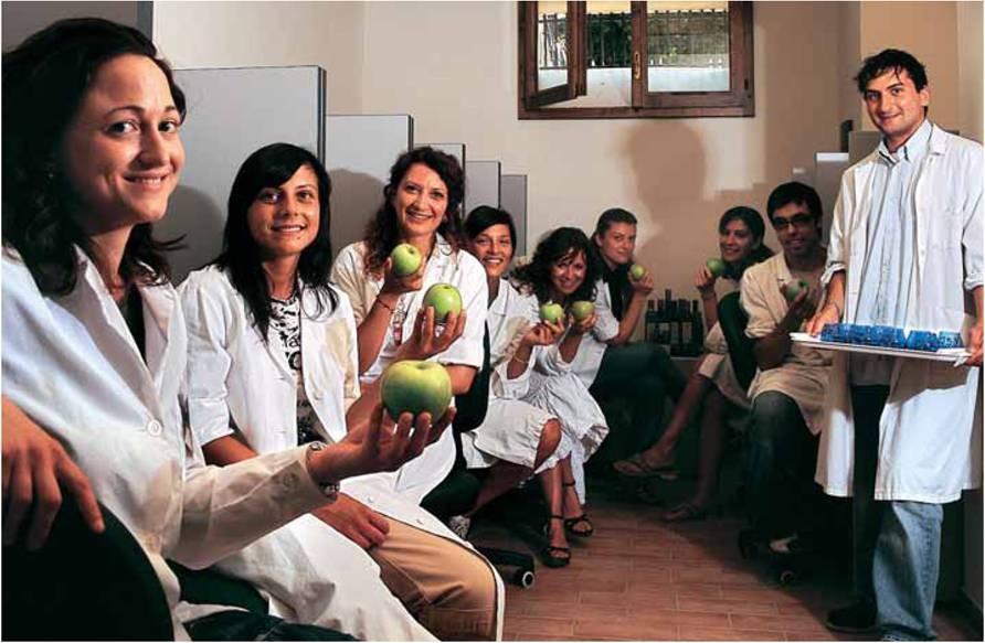 Gestione del panel di degustazione degli oli da olive in casi di emergenza, le linee guida