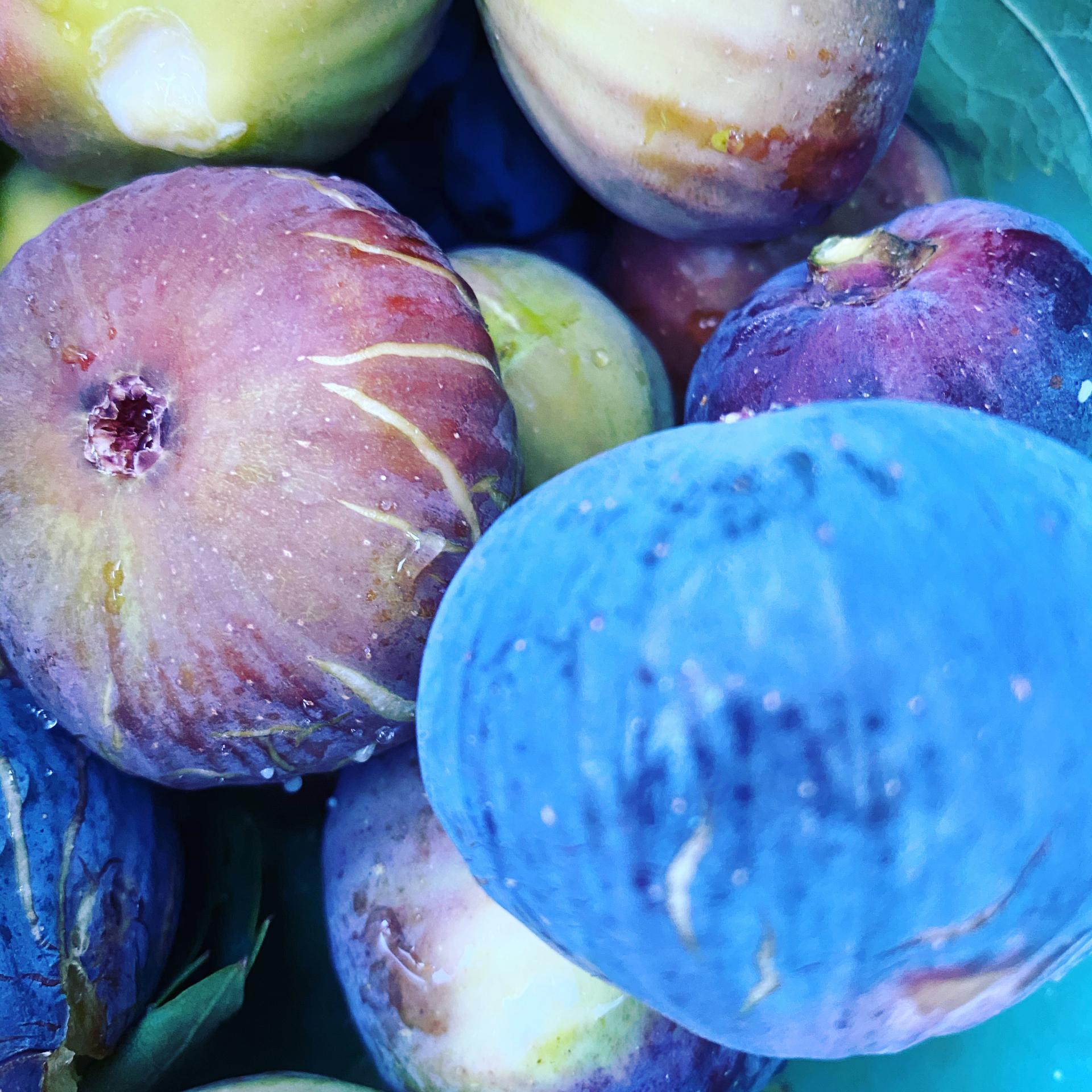 Frutta e verdura meritano devozione e ammirazione