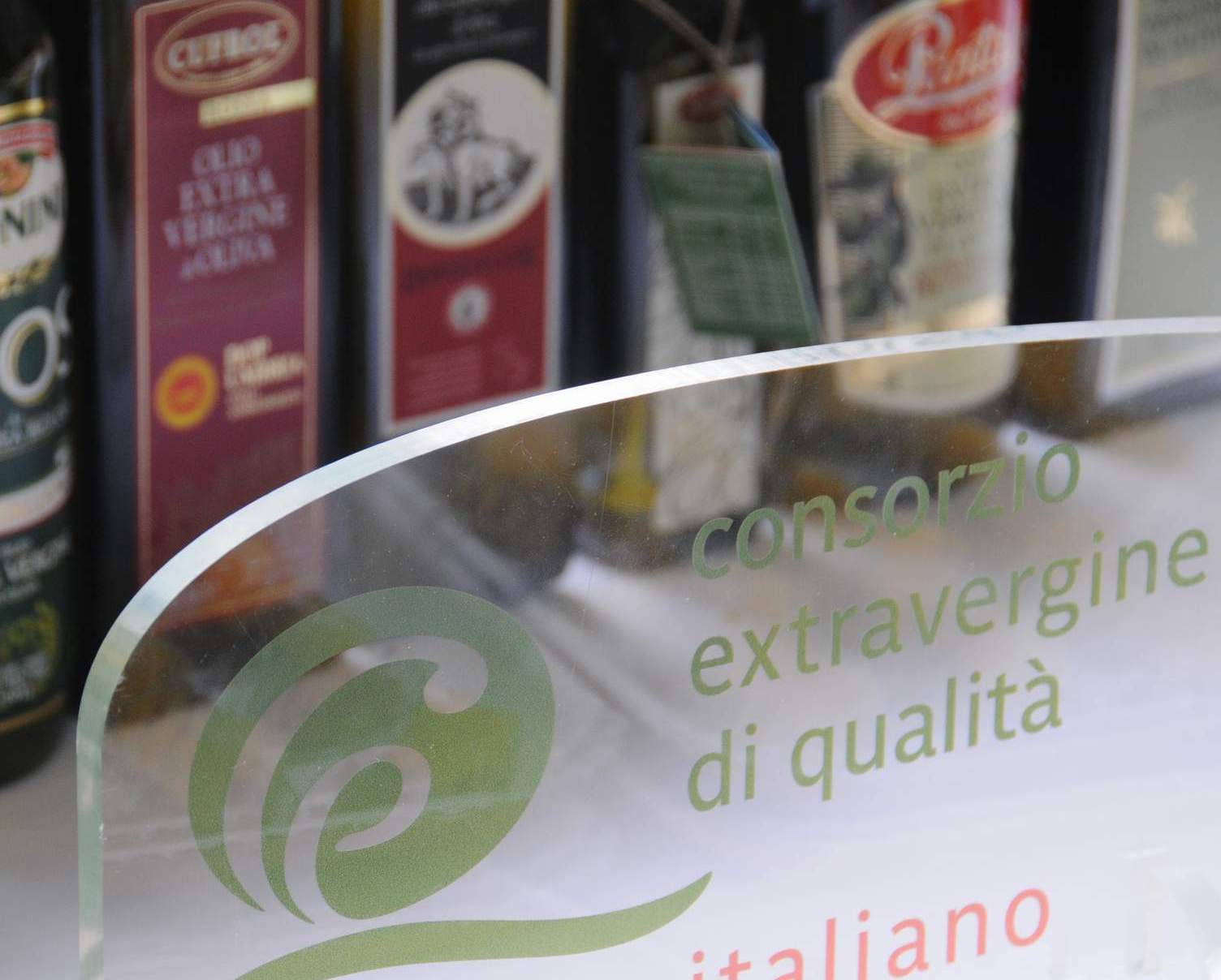 Lo stato del comparto oleario italiano aggiornato al 23 settembre