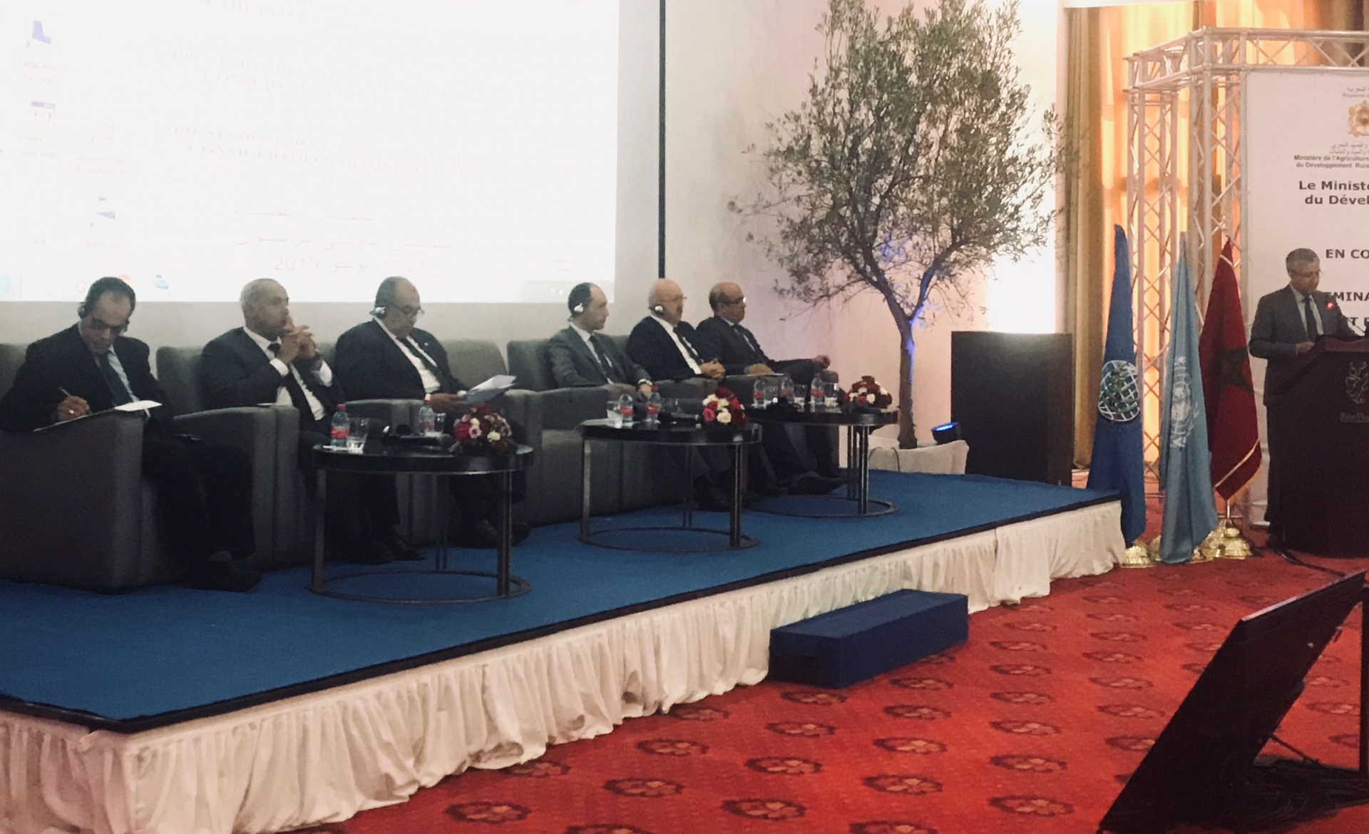 A Marrakech un seminario del Consiglio oleicolo internazionale sul futuro del settore olivicolo