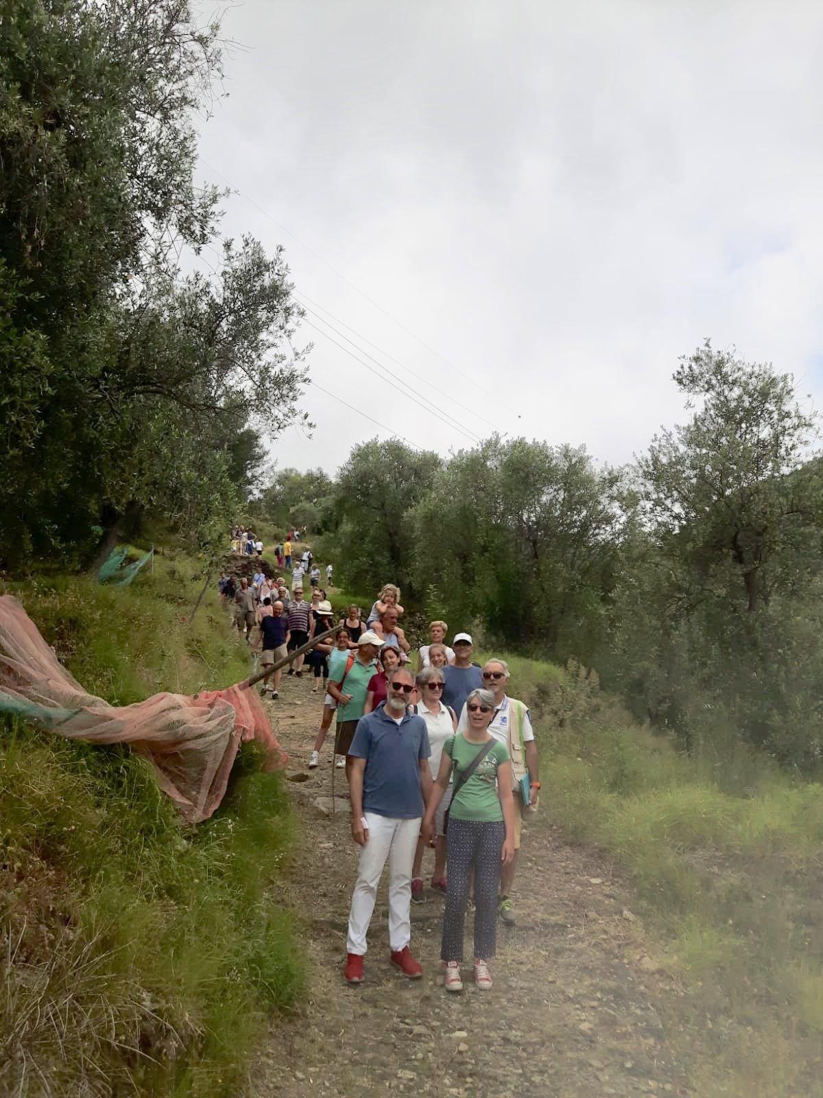 La Liguria e il sapore della tradizione: ottimo successo per la prima di Oliveti Aperti