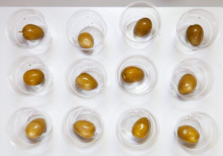 L'assaggio delle olive da tavola a Olio Officina Festival 2021