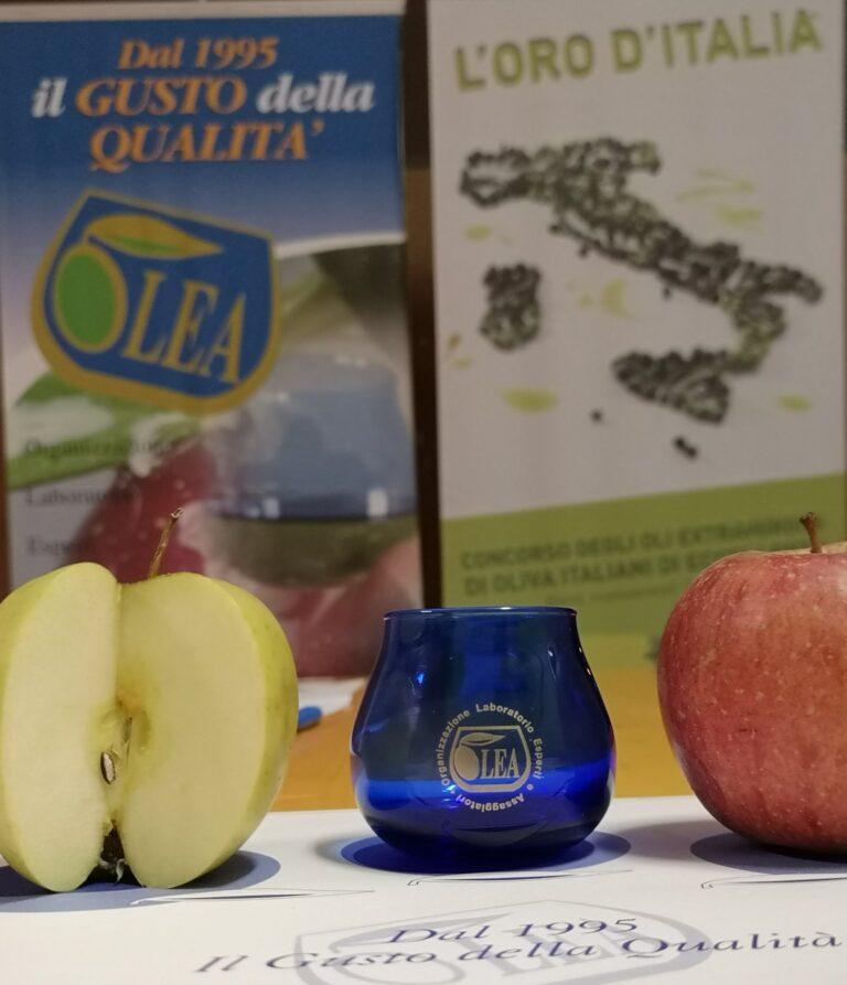 L'elenco, aggiornato al 30 novembre 2020, dei panel di assaggio degli oli di oliva riconosciuti in Italia
