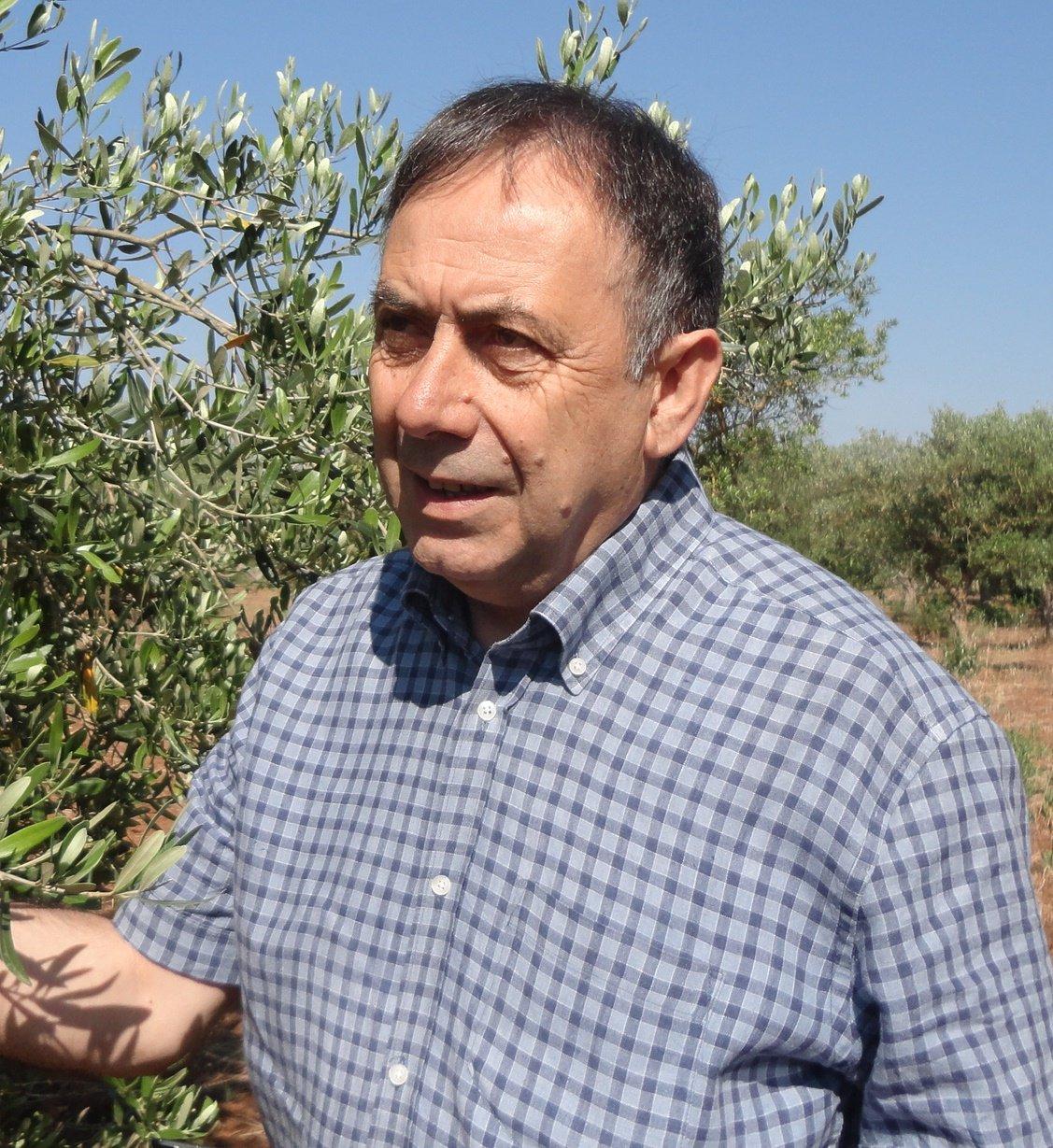 In Italia il dileggio, all'estero solo lodi per il ricercatore Donato Boscia